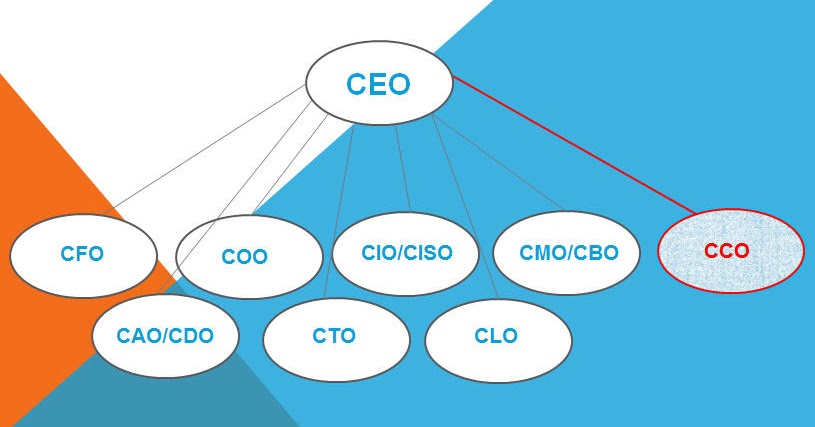 how to become a chief customer officer