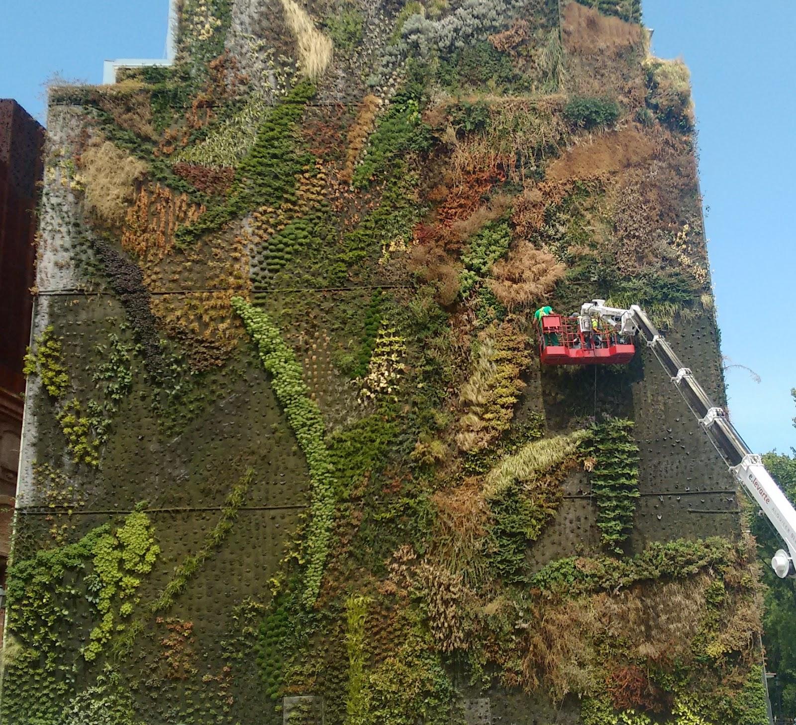 Caixa forum madrid y sus cosas for Jardin vertical caixaforum madrid