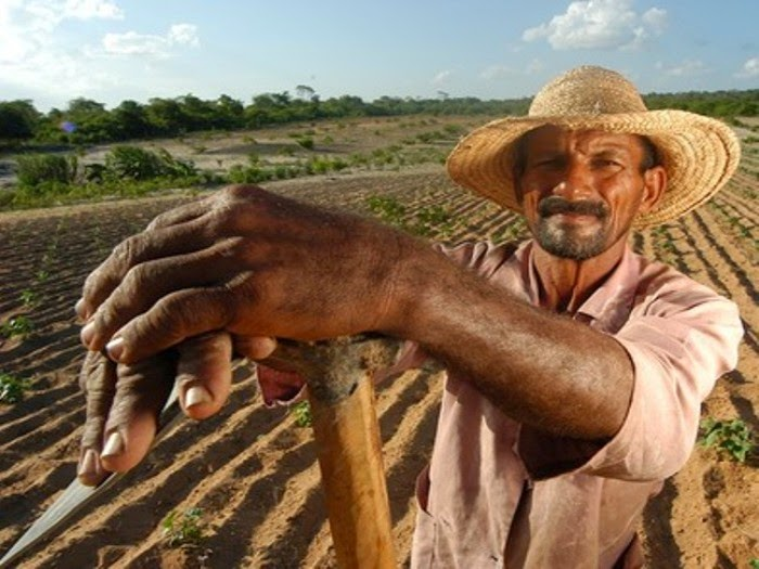 Mais de mil agricultores são contemplados com o Garantia Safra em Quixabeira; em Jacobina apenas 348 foram beneficiados