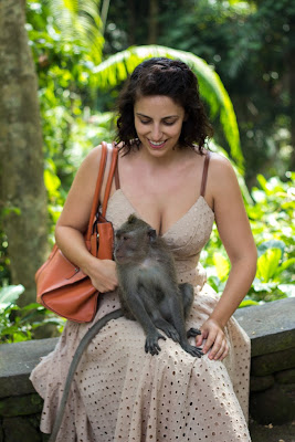 holiday in ubud, spa in ubud, monkey forest, museum