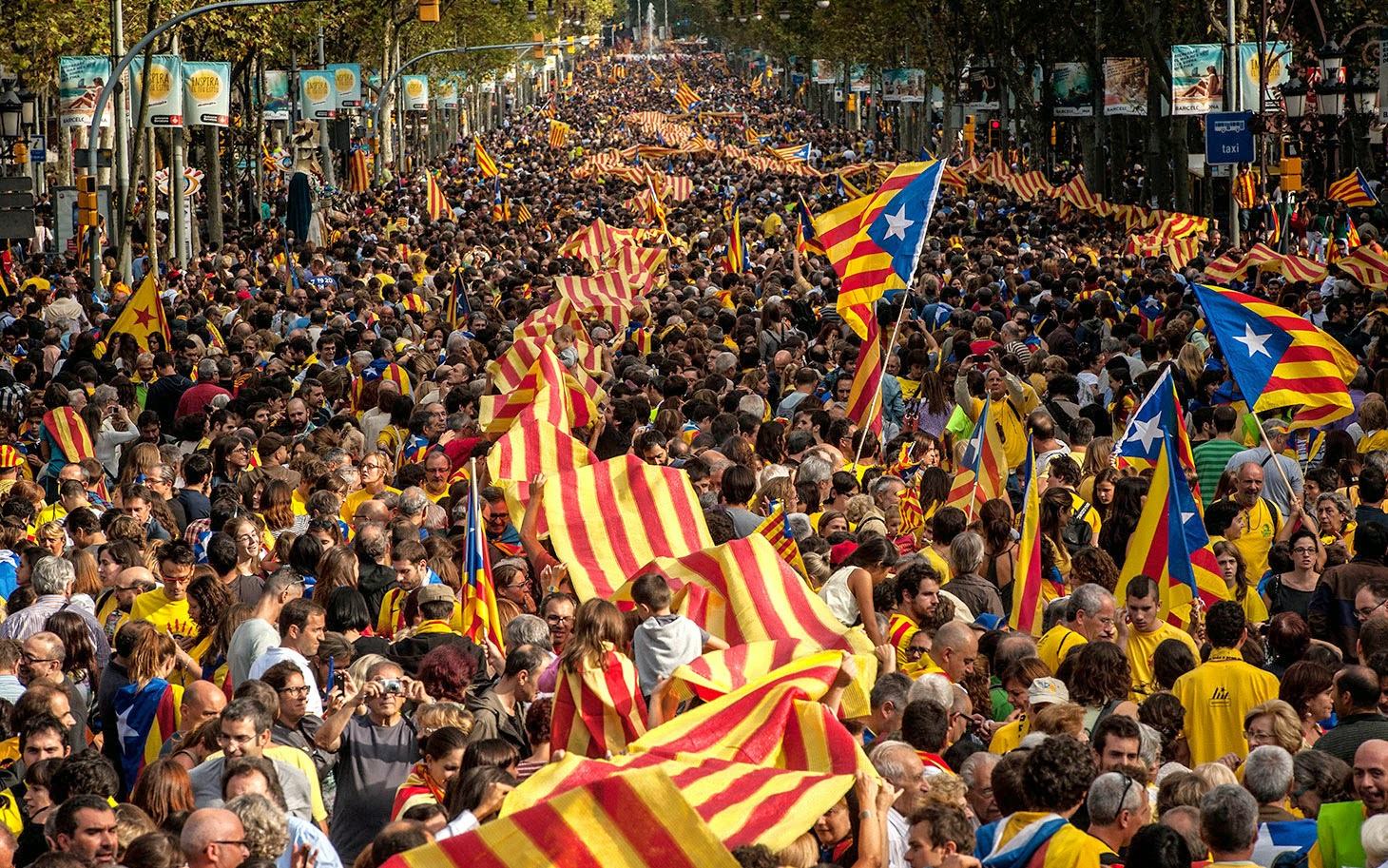 http://www.presstv.com/detail/2014/10/03/380934/catalonia-defies-spain-court-ruling/