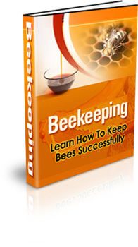 HOW TO START AND MAKE MONEY KEEPING BEES