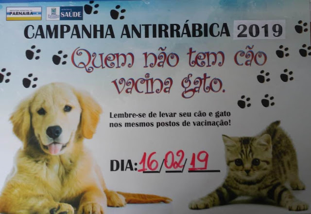 """""""Dia D"""" da Campanha de Vacinação Antirrábica será no dia 16 de fevereiro"""