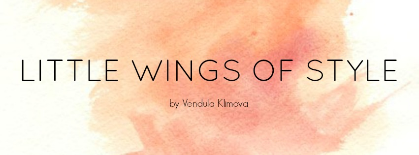 little wings of style