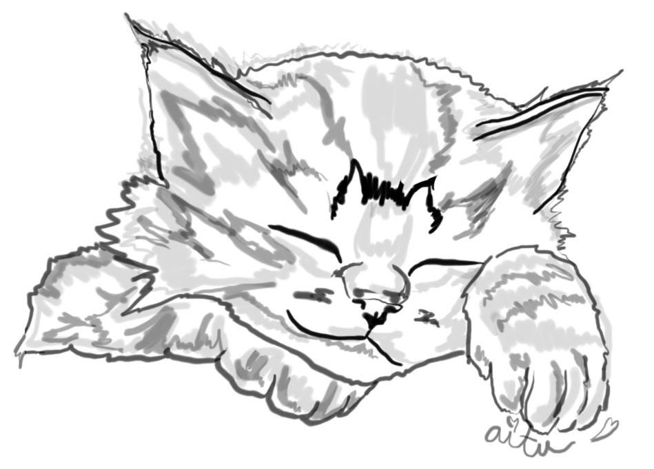 puppies and kittens sleeping together. Sleepy Kitten is Sleepy~
