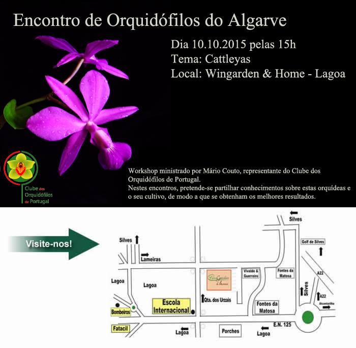 workshop no algarve sobre cattleya clube orquidofilos portugal. Black Bedroom Furniture Sets. Home Design Ideas