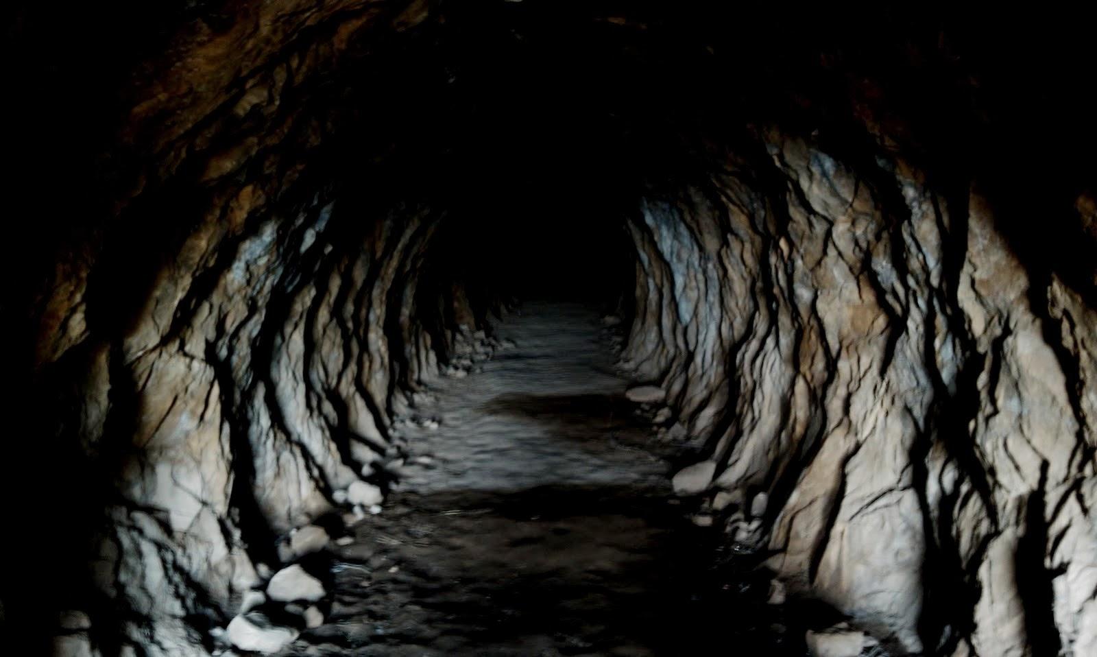http://elvisitantemaligno.blogspot.com/2014/01/la-cueva-de-los-ecos-de-hp-blavatsky.html
