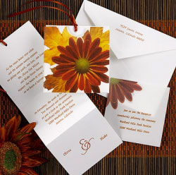 ecru wedding invitation