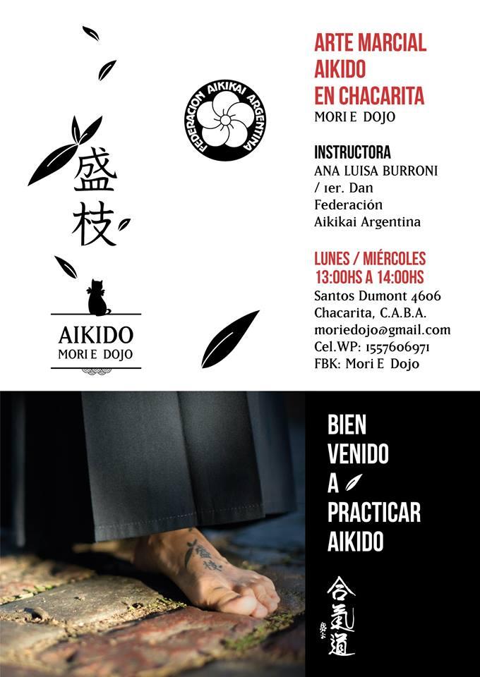 Clases de aikido