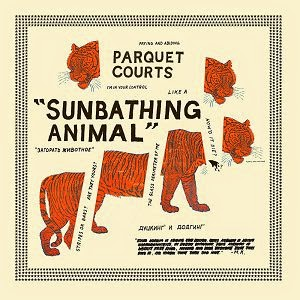 Parquet Courts Sunbathing Animal cover