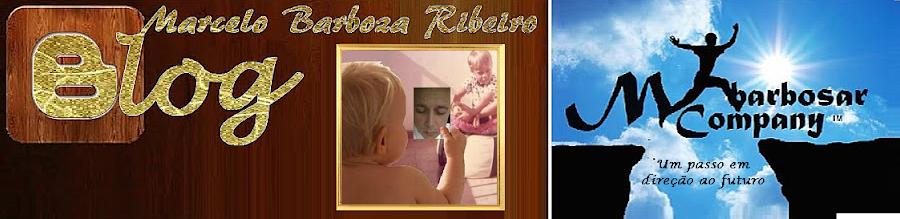 Blogger do Marcelo Barboza Ribeiro