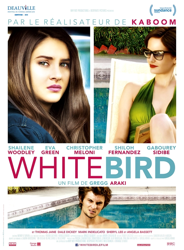 Póster: White Bird in a Blizzard