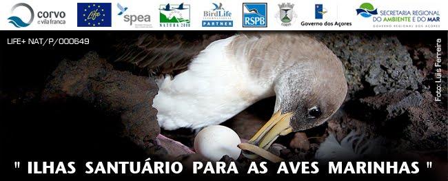 """Ilhas Santuário para as Aves Marinhas"""