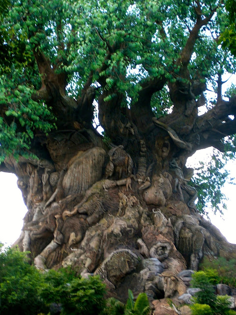 Tree of Life - Animal Kingdom, Disney World, Florida