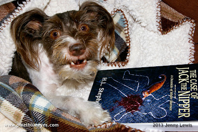 "Photo of Pixel with book ""The Case of Jack the Nipper: A Chronicle of Mister Marmee"""