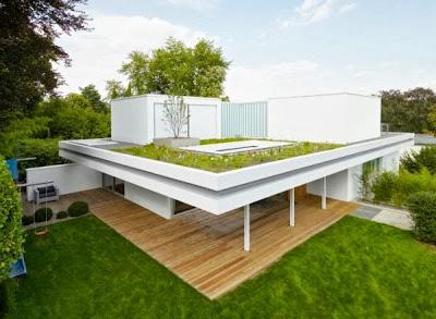 12 Inspirasi Rumah Dengan Green Roof