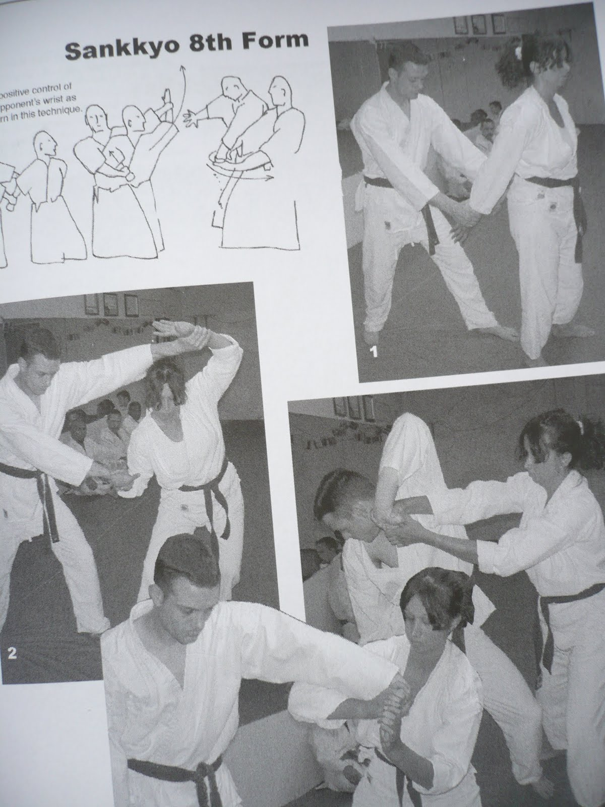 The Traditional Aikido Book  <b>`Positive Aikido` </b>