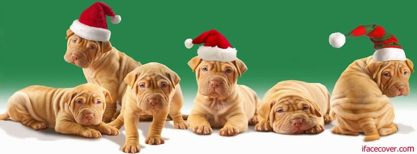 Cute Dogs Christmas Cover Photo