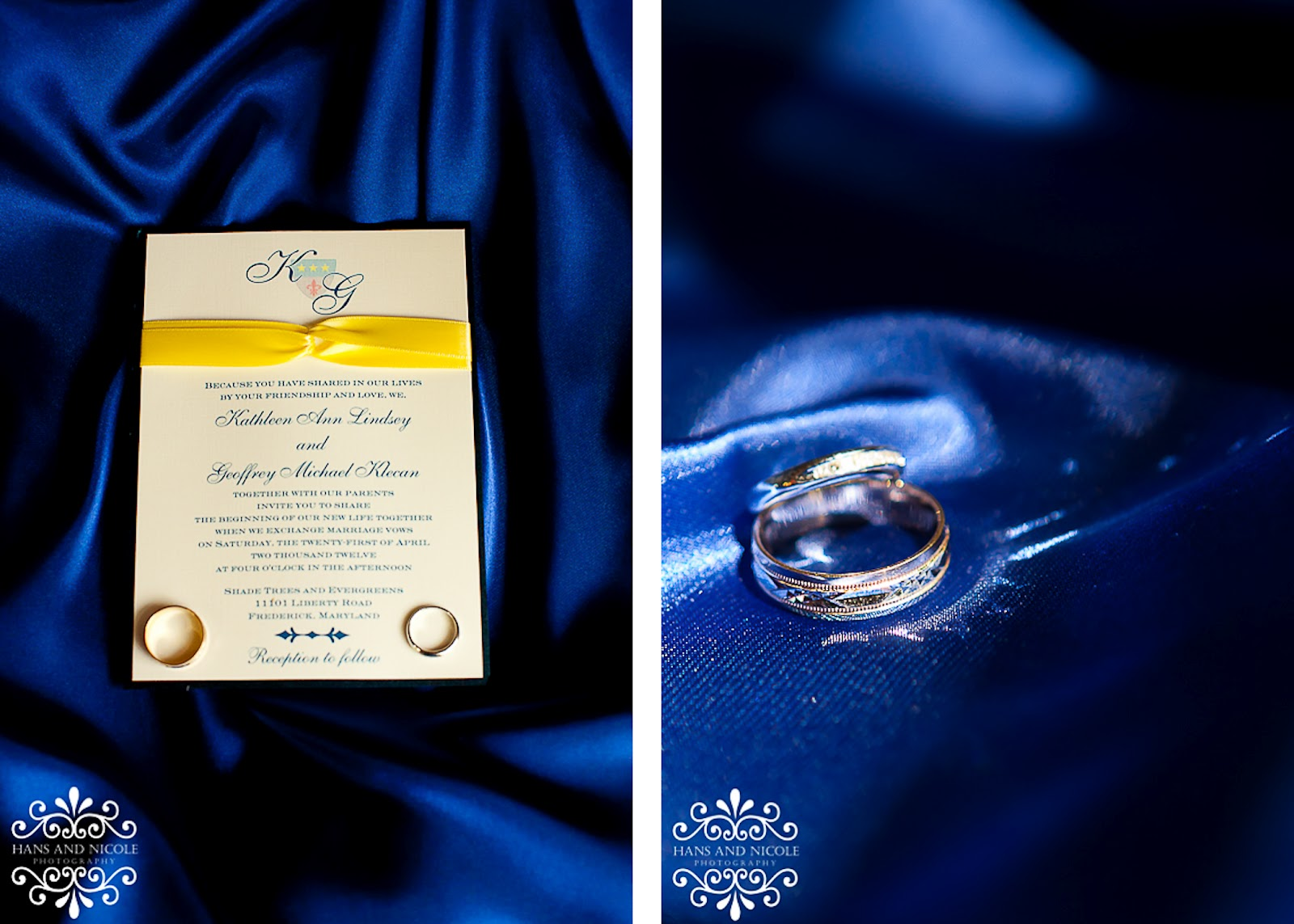 photography of invitation at shade trees and evergreens