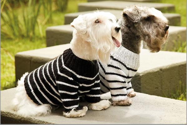 Artesanato diversão e prazer: Mais roupinhas para cachorros
