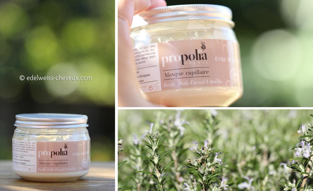 masque naturel pour cheveux secs miel