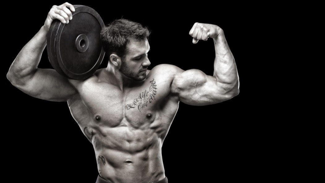 Image result for Bodybuilding Workouts Program