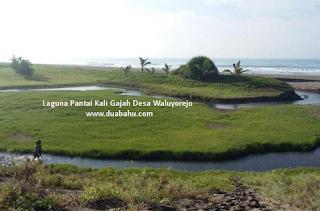 Laguna Pantai Kali Gajah Waluyorejo
