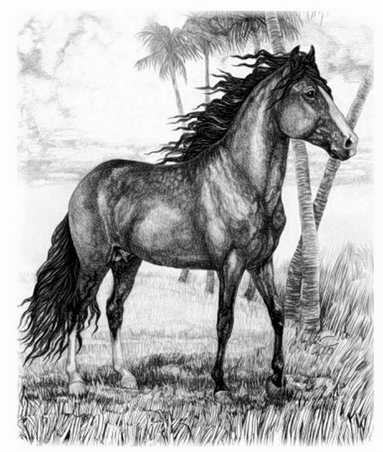 caballos-pintados-a-lapiz