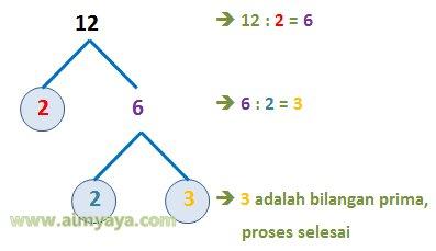 Gambar: Contoh pohon faktor prima dari 12
