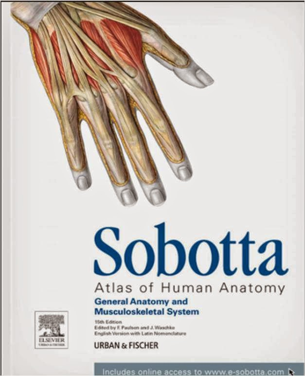 Free Download Medical Ebooks Sobotta Atlas Of Human Anatomy 15th