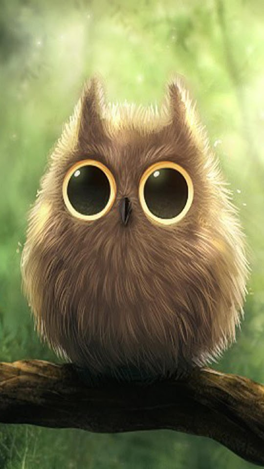 Cute Big Eyes Owl  Galaxy Note HD Wallpaper