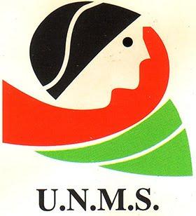 Página de la Unión Nacional de Mujeres Saharauis