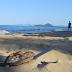 Coup de coeur n°5 : Palm Cove, plage et palmiers en Australie