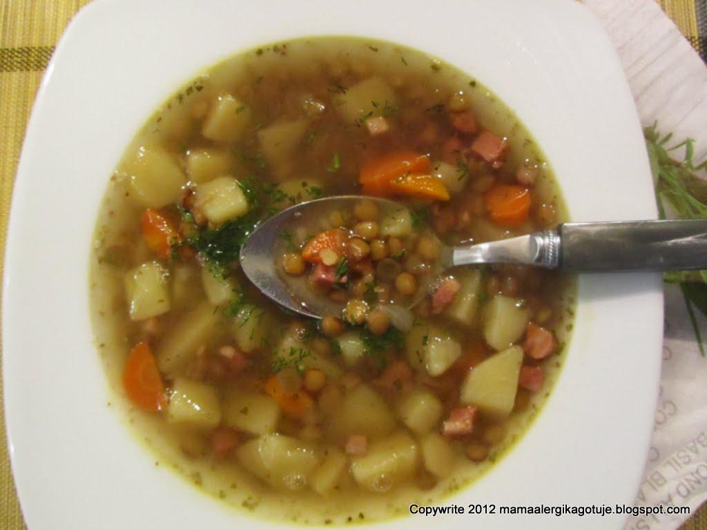 Pozywna Zupa Z Zielona Soczewica Mama Alergika Gotuje