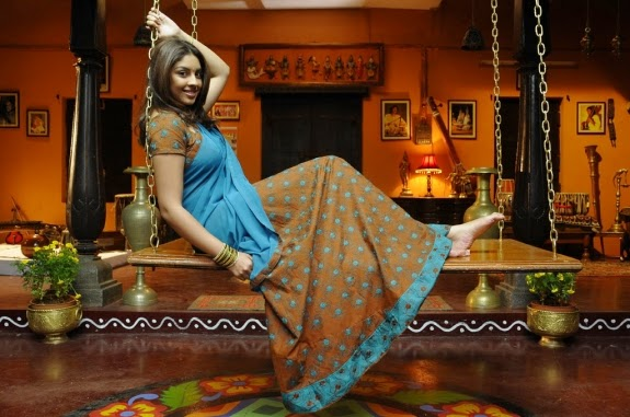 richa gangopadhyay hot pics in blue saree latest new hot photoshoot pics hd free download