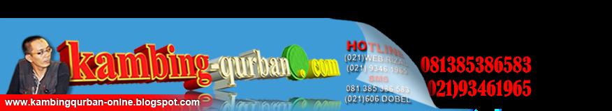 KambingQurban-online.com