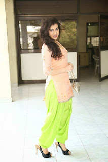 Actress Archana Veda Pictures in Salwar Kameez at Anandini Movie Press Meet  11