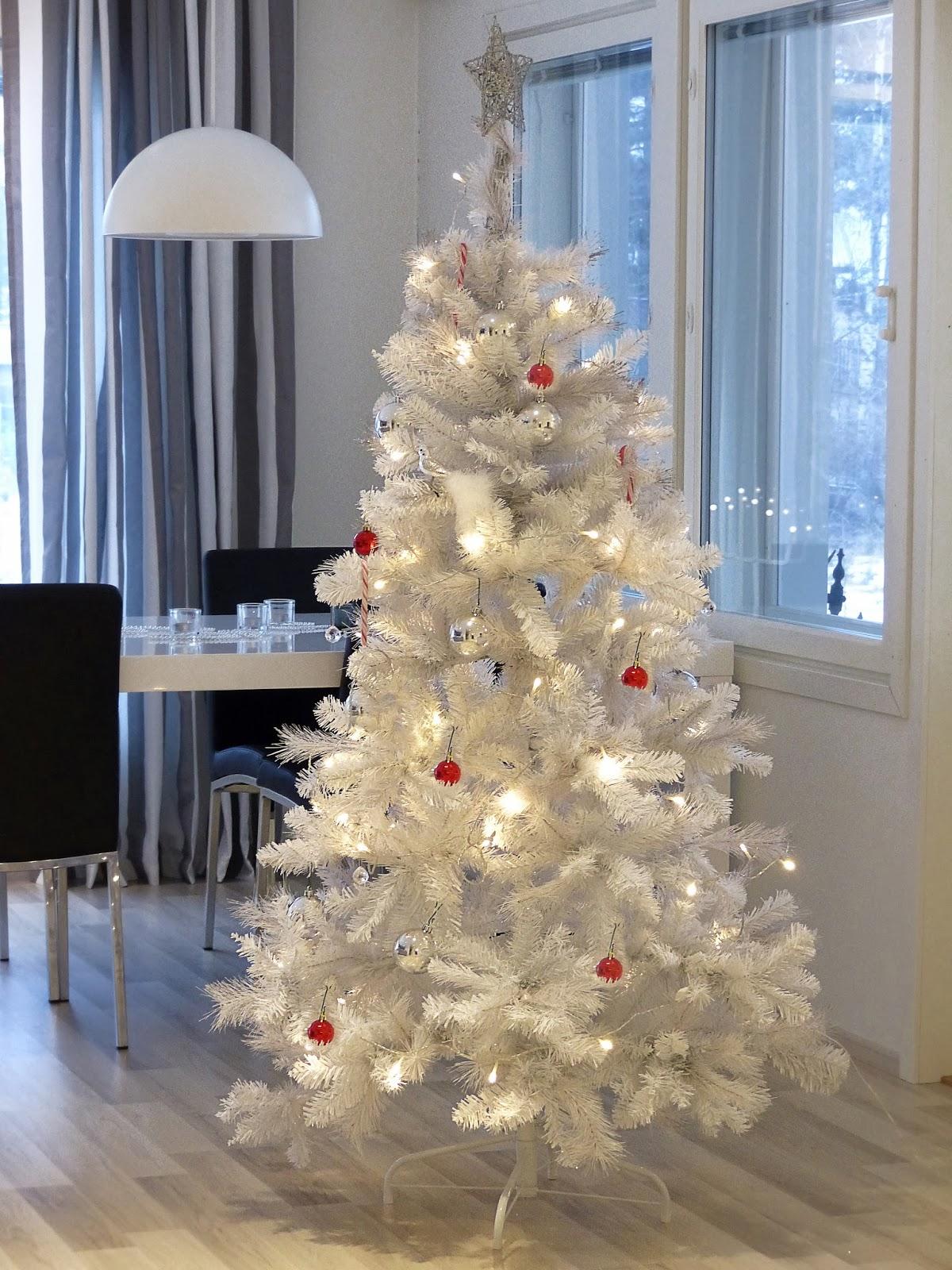valkoinen joulukuusi Syhinä: Valkoinen joulukuusi valkoinen joulukuusi