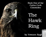 The hawk ring