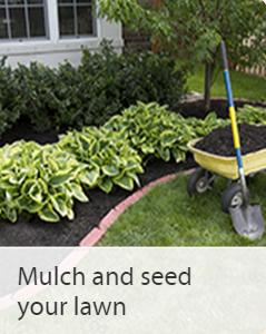 The Art Of Mulch