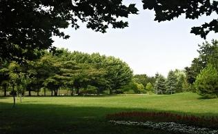 Bursa Soğanlı Botanik Parkı