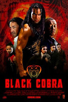 Download Film Black Cobra (2012)