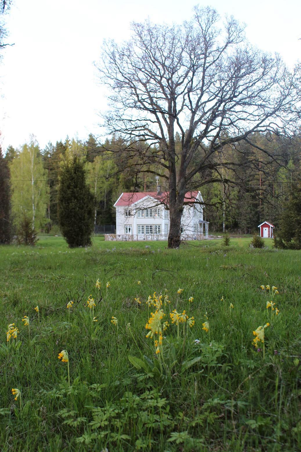 CLARAS HEM PÅ BYVÄGEN : Att bygga ett nytt hus i gammal stil