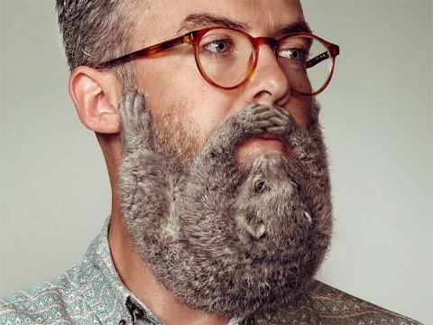 columna Josetxu, barbas,