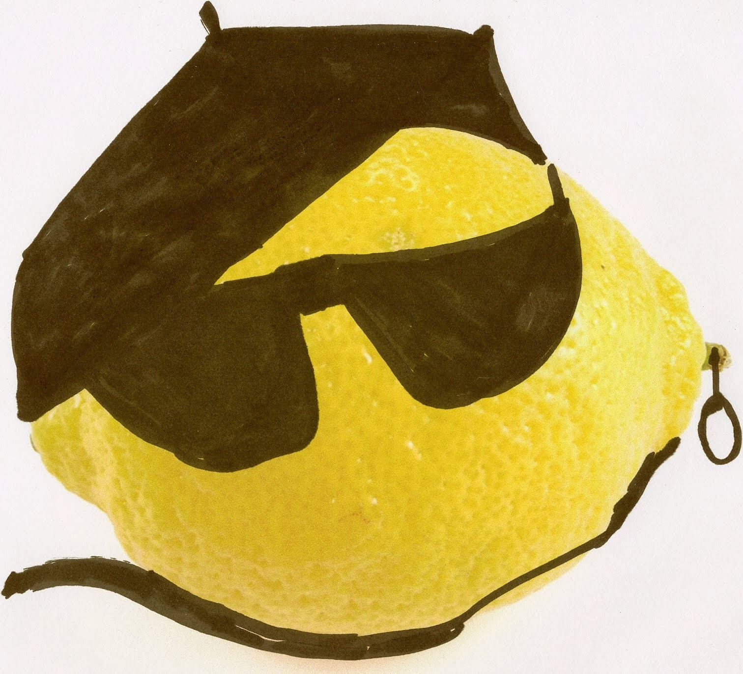 @dropthatlemon: The Most Interesting Lemon In the Sidebar