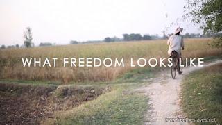 FreedomLooksLike