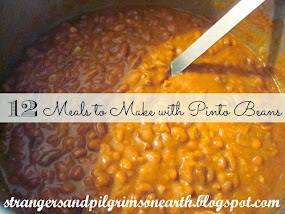 12 Meals to Make with Pinto Beans