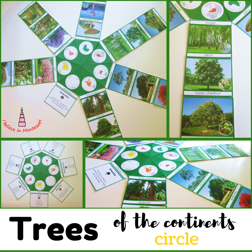Trees of the continents Montessori-inspired circle cards