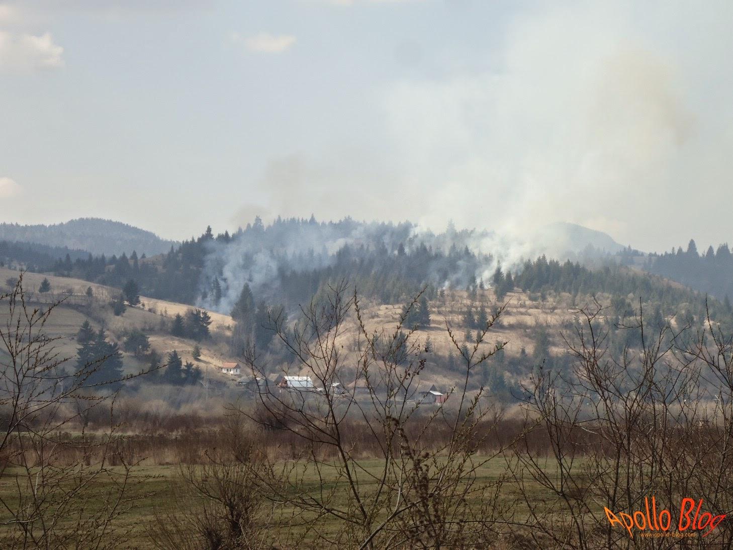 Incendiu Toplita