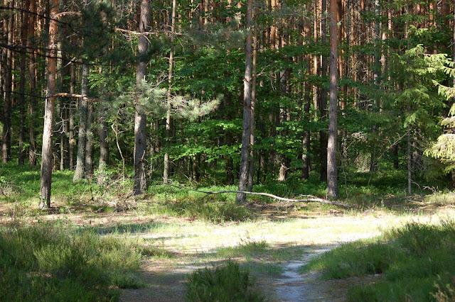Gospodarstwo-agroturystyczne-ekoturystyczne